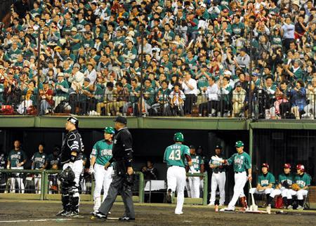 野球写真02.png